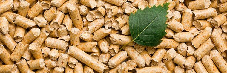 Calderas de biomasa para mejorar la eficiencia energética